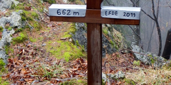 Gipfel Ofenberg 662 m