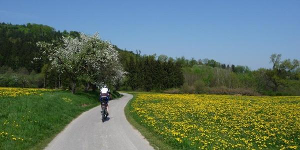 So macht Radfahren richtig Spaß.............