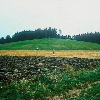 Blick auf den Grabhügel Magdalenenberg.