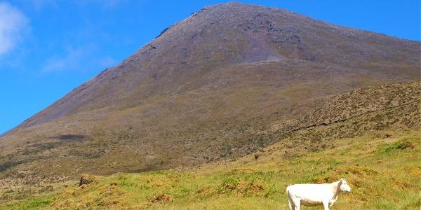 """Pico von der """"Casa da Montanha"""" 1221m"""