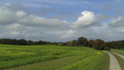 Endlose Weite, Felder, Plattenwege und Alleen prägen das Landschaftsbild.