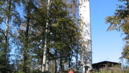 Mahlbergturm bei Gaggenau im Murgtal