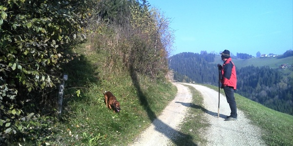 Wanderer mit Hund
