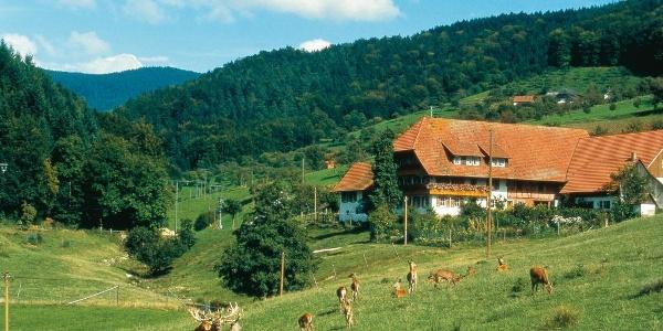 Bauernhof bei Gengenbach