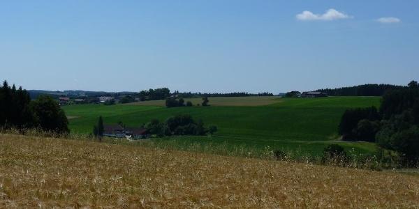 Blick ins Apfelbachtal