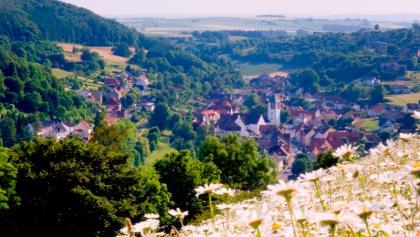 Blick auf Dalhausen