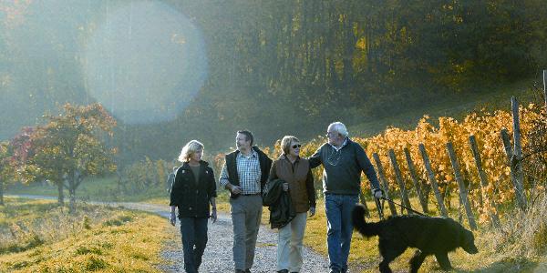 Wanderer bei Dörrenbach