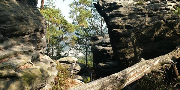 Wir wandern durch die schönen Felsformationen der Rauensteine.