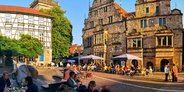 Der Stadtkater im historischen Rathaus Rinteln