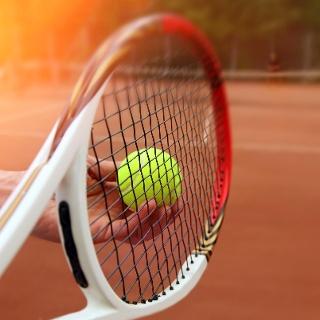 Tennisverein Urscha Labuch