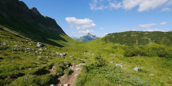 Blick vom Salzbüheljoch zum Warther Horn, davor die Hintere Lechleitner Alpe
