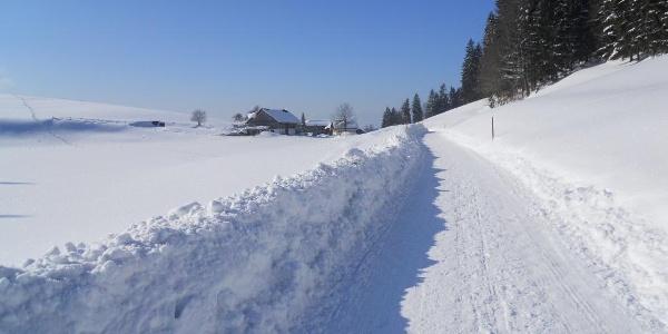 Winterwanderweg auf dem Pfänder