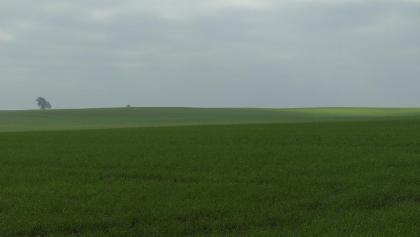 Beeindruckende Weite am Weg durch das Moorgebiet.