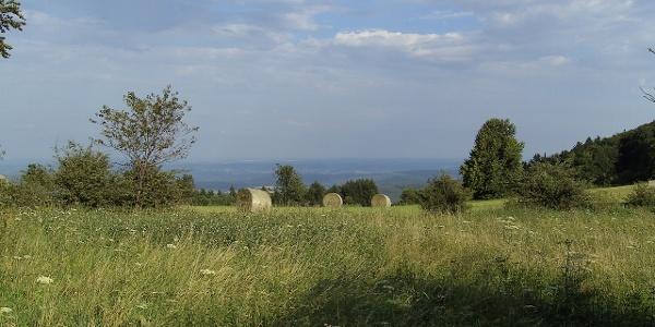 Ausblick über die Magerwiesen, auf denen das besonders würzige Heu gewonnen wird.