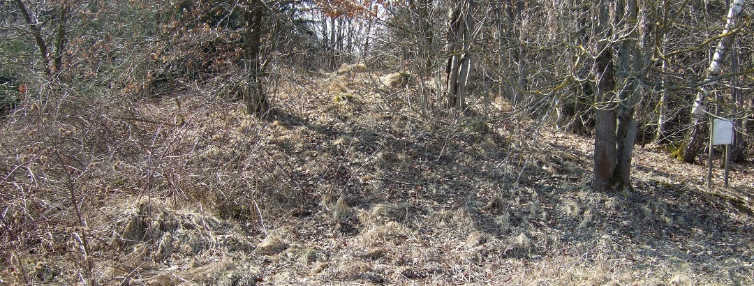 Auf einigen der Grabhügel wachsen Bäume.