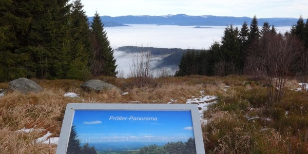 Blick vom Pröller in den Bayer. Wald