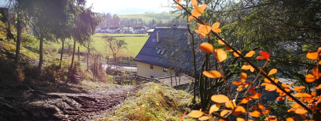 Von Sonthofen bergauf zur Ruine Fluhenstein