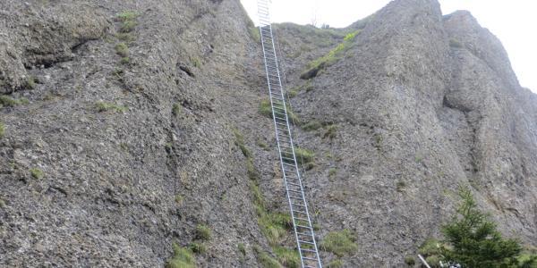 die berühmte Leiter am Steineberg