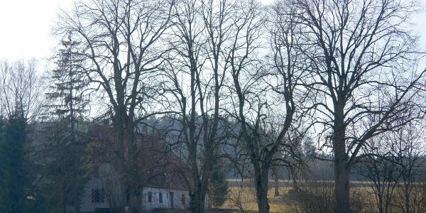 Forsthaus Bibersohl
