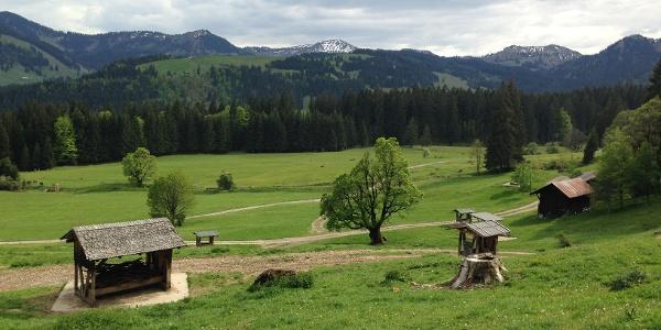 Landschaft im Gunzesrieder Tal