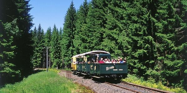 Wernesgrüner Schienen-Express inmitten der wunderschönen Natur