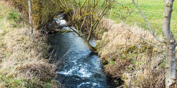 Am Mühlenbach