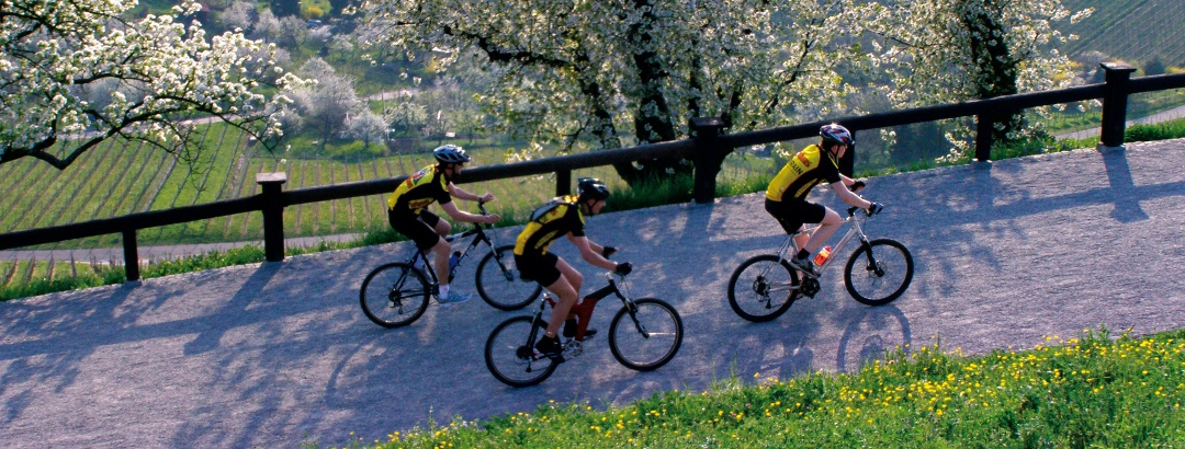 Radfahren in der Region Stuttgart