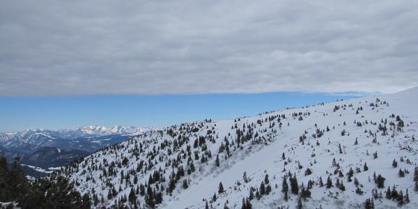 Toller Blick in die Tiroler Alpen