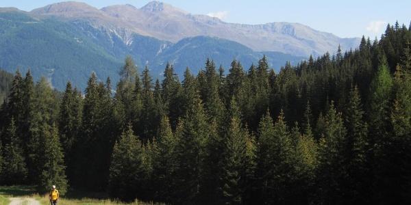 Blick zurück zu den Lienzer Dolomiten (Golzentipp)