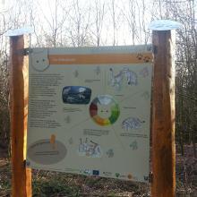 Tafeln zur Info über die Wildkatze, gefördert durch das EU-Life-Projekt