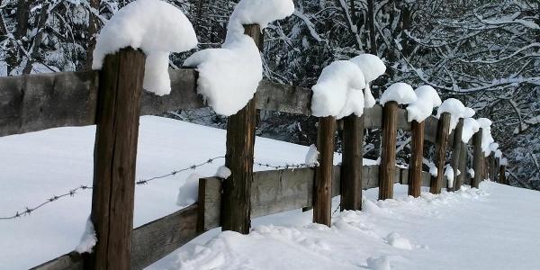 Winterwanderung - Geizenmoos