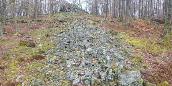 Steinwall der Heidemauer