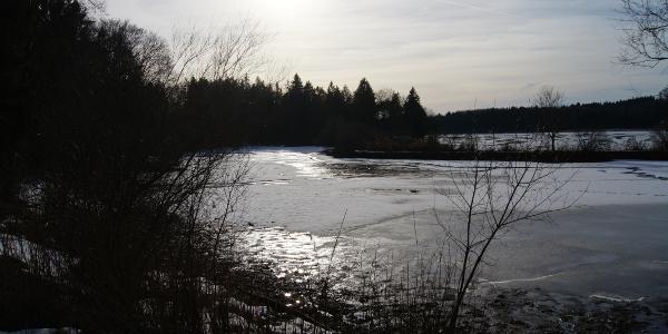 Nachmittägliche Winterstimmung