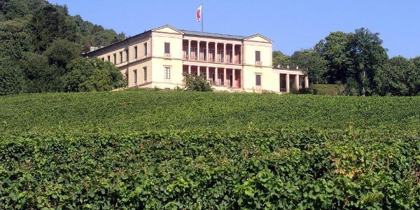 Villa im Rebenmeer