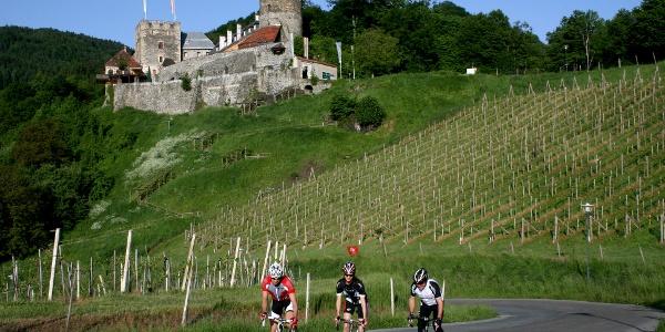 Das Schilcherland ist auch für Rennradfahrer beliebtes Urlaubsziel