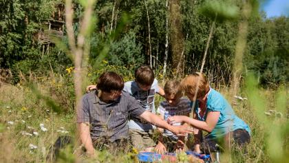 Picknick in der Dahlener Heide