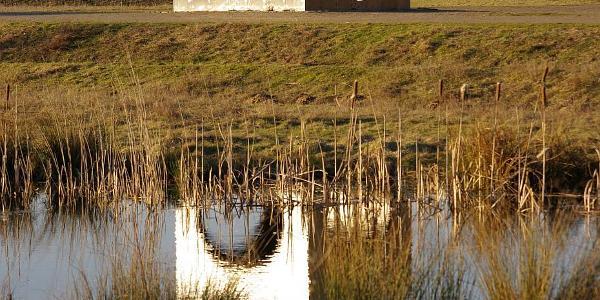Kunstwerk am Kanal / Biotop
