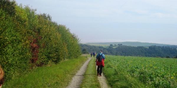 Stumm-Eisenhütten-Weg