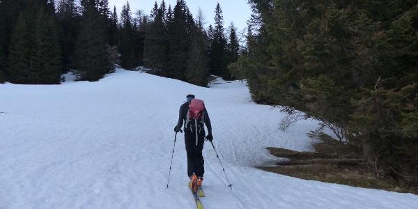 Über die Wiese führt der Anstieg zum Obernberger See.