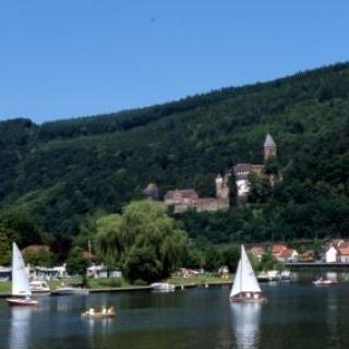 Zwingenberg - Neckar und Schloss Zwingenberg