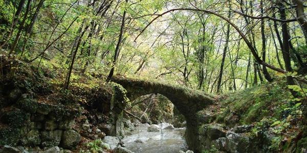 Terre Verdi