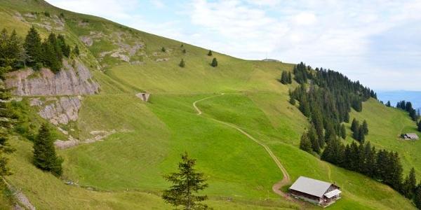 Der Wanderweg am Dossen.
