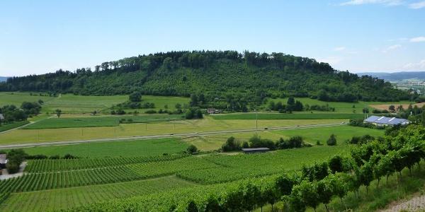 Blick vom Elisabethenberg am Hohentwiel zum Plören
