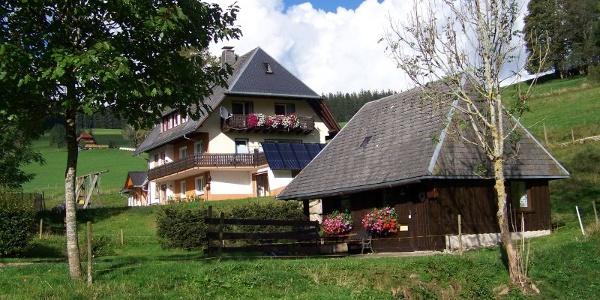 Gästehaus  mit Ferienhaus im Vordergrund