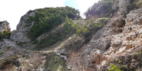 Charakteristisches Gelände am Steig
