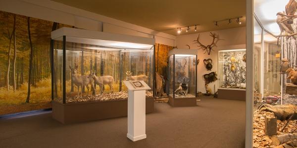 Das Schieferbergbau- & Heimatmuseum