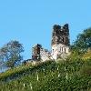 Blick aufs Wolfer Kloster