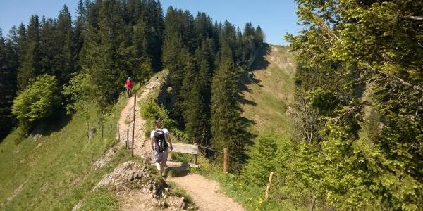 Weg zum Hohenfluhalpkopf
