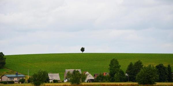 Landschaft bei Mügeln
