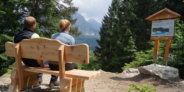 Blick in Richtung Schloss Neuschwanstein